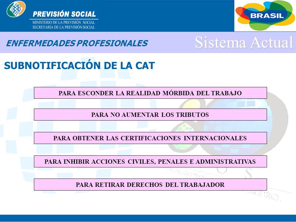 BRASIL Sistema Actual ENFERMEDADES PROFESIONALES ¿POR QUÉ LAS EMPRESAS NO EMITEN LA CAT?
