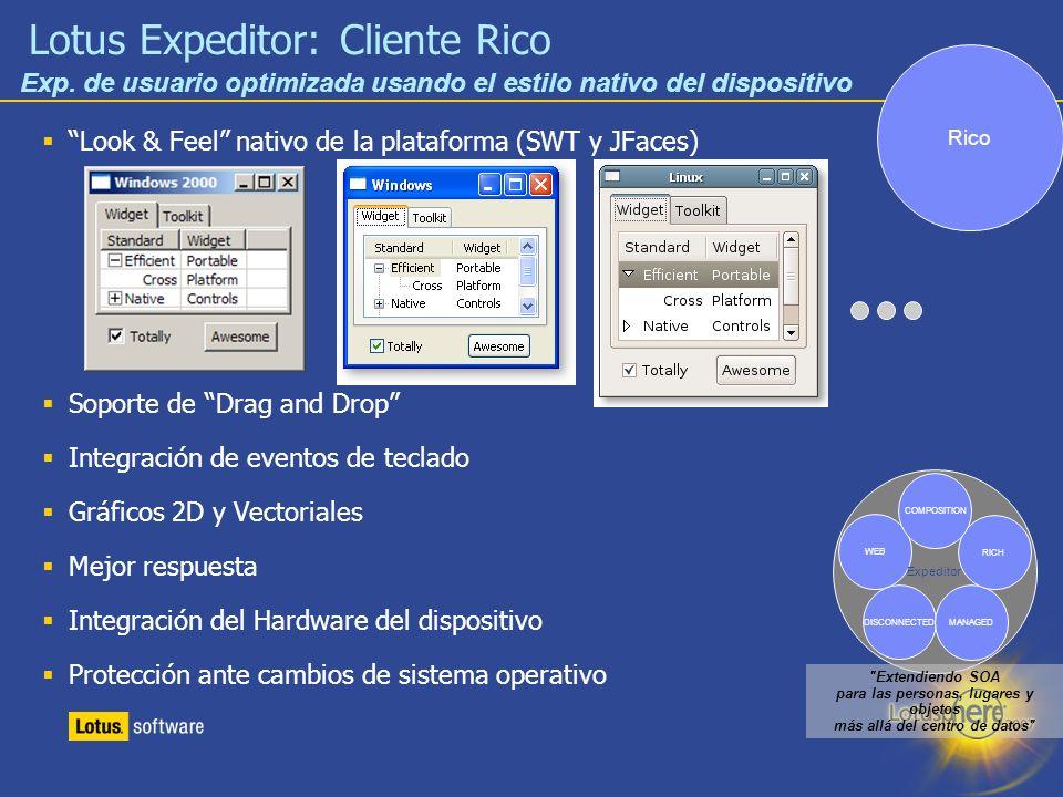15 Lotus Expeditor: Cliente Rico Look & Feel nativo de la plataforma (SWT y JFaces) Soporte de Drag and Drop Integración de eventos de teclado Gráfico