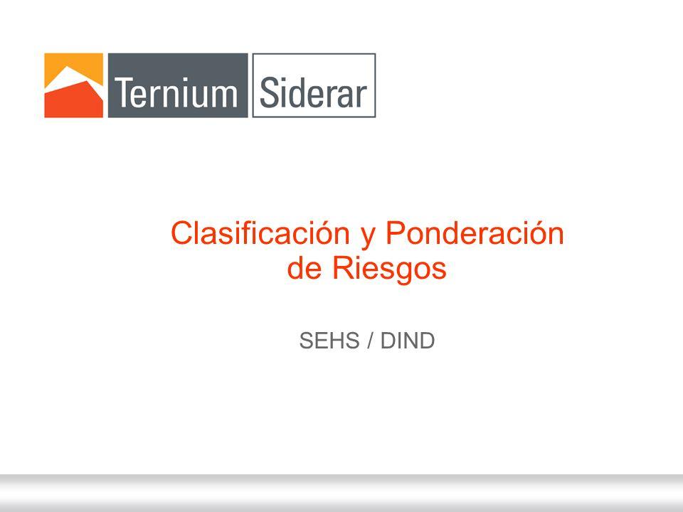 31 de Diciembre de 2013 Clasificación y Ponderación de Riesgos SEHS / DIND