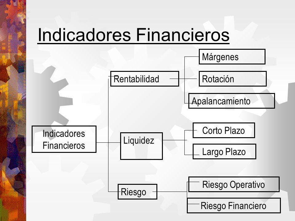 Indicadores Financieros Márgenes Rotación Apalancamiento Corto Plazo Largo Plazo Riesgo Operativo Riesgo Financiero Liquidez Rentabilidad Riesgo Indicadores Financieros