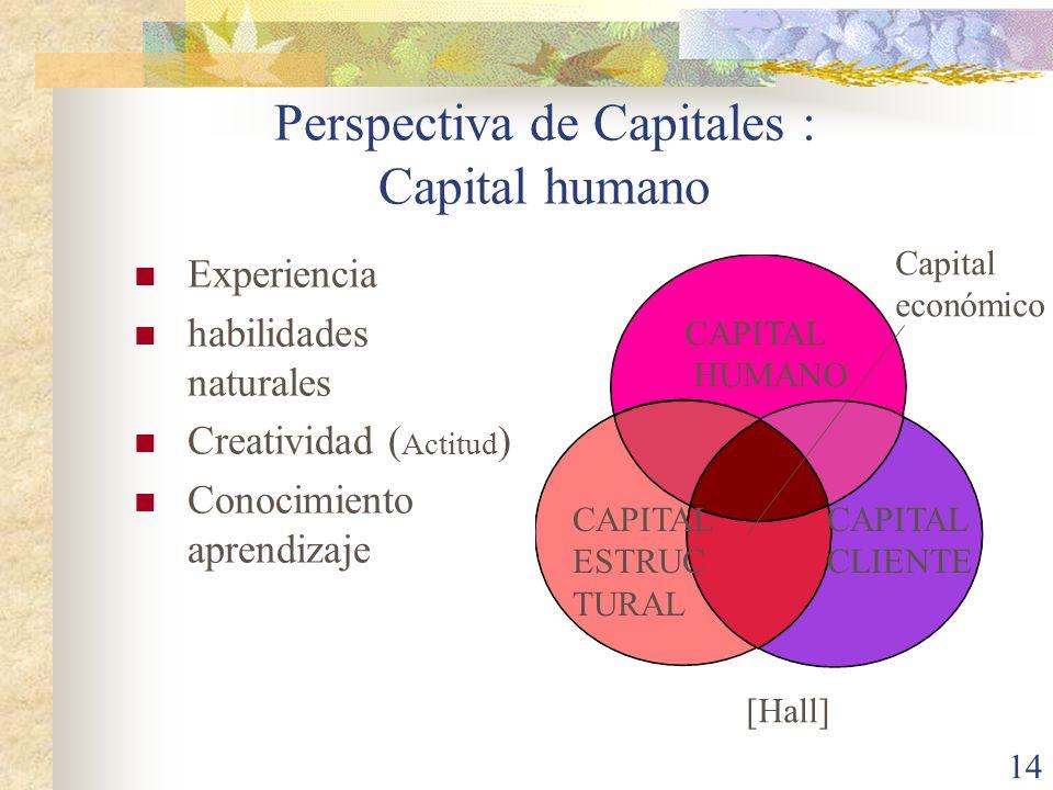 14 Experiencia habilidades naturales Creatividad ( Actitud ) Conocimiento aprendizaje CAPITAL HUMANO CAPITAL ESTRUC TURAL CAPITAL CLIENTE Capital econ
