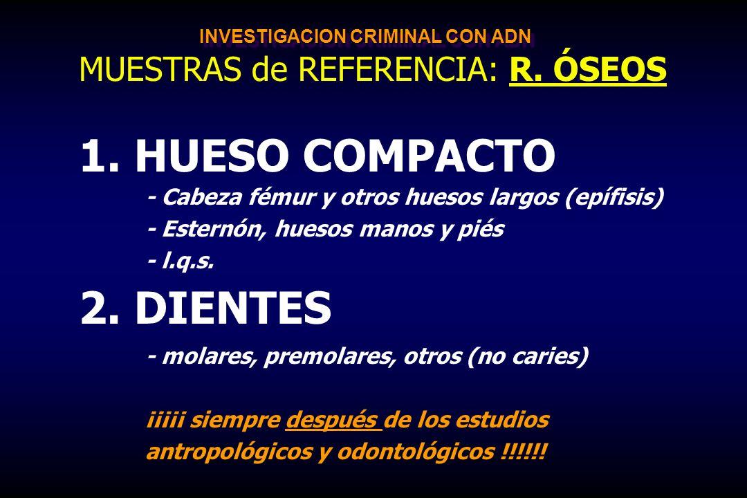 INVESTIGACION CRIMINAL CON ADN MUESTRAS de REFERENCIA: R. ÓSEOS 1. 1. HUESO COMPACTO - Cabeza fémur y otros huesos largos (epífisis) - Esternón, hueso