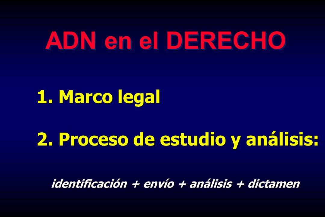 1. Marco legal 2. Proceso de estudio y análisis: identificación + envío + análisis + dictamen ADN en el DERECHO