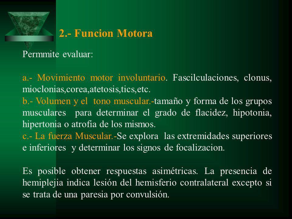 2.- Funcion Motora Permmite evaluar: a.- Movimiento motor involuntario. Fascilculaciones, clonus, mioclonias,corea,atetosis,tics,etc. b.- Volumen y el