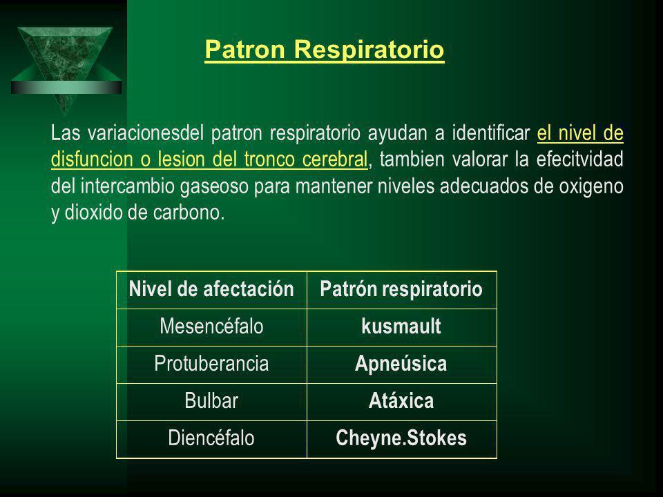 Las variacionesdel patron respiratorio ayudan a identificar el nivel de disfuncion o lesion del tronco cerebral, tambien valorar la efecitvidad del intercambio gaseoso para mantener niveles adecuados de oxigeno y dioxido de carbono.