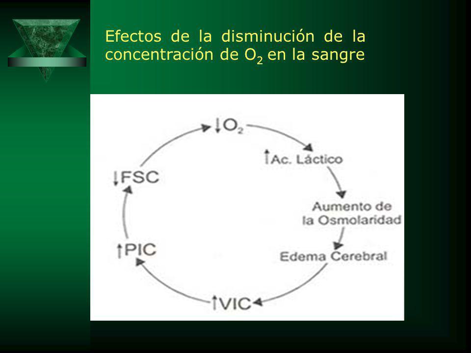 Efectos de la disminución de la concentración de O 2 en la sangre