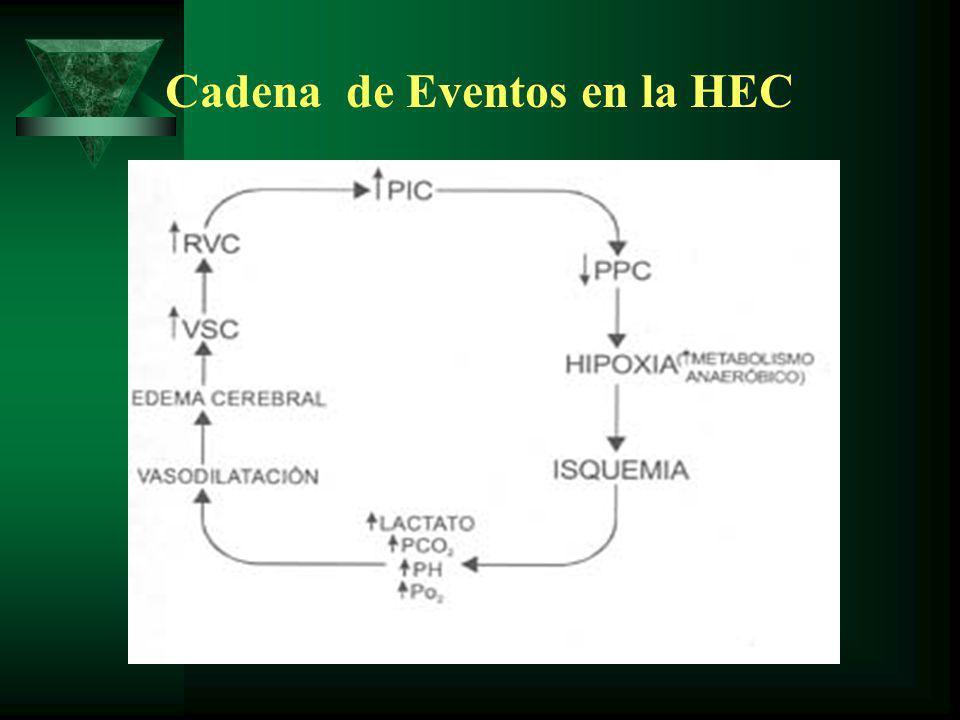 Cadena de Eventos en la HEC