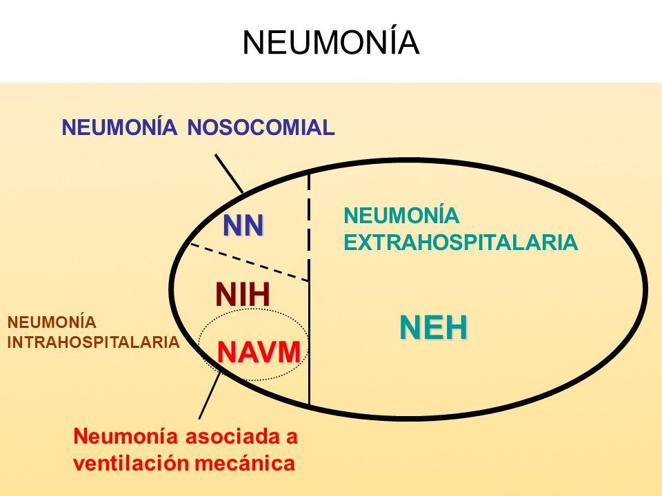 NEUMONÍANEH NN NAVM NIH NEUMONÍA EXTRAHOSPITALARIA Neumonía asociada a ventilación mecánica NEUMONÍA INTRAHOSPITALARIA NEUMONÍA NOSOCOMIAL