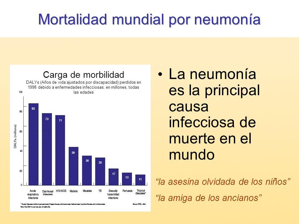 Mortalidad mundial por neumonía La neumonía es la principal causa infecciosa de muerte en el mundo la asesina olvidada de los niños la amiga de los an