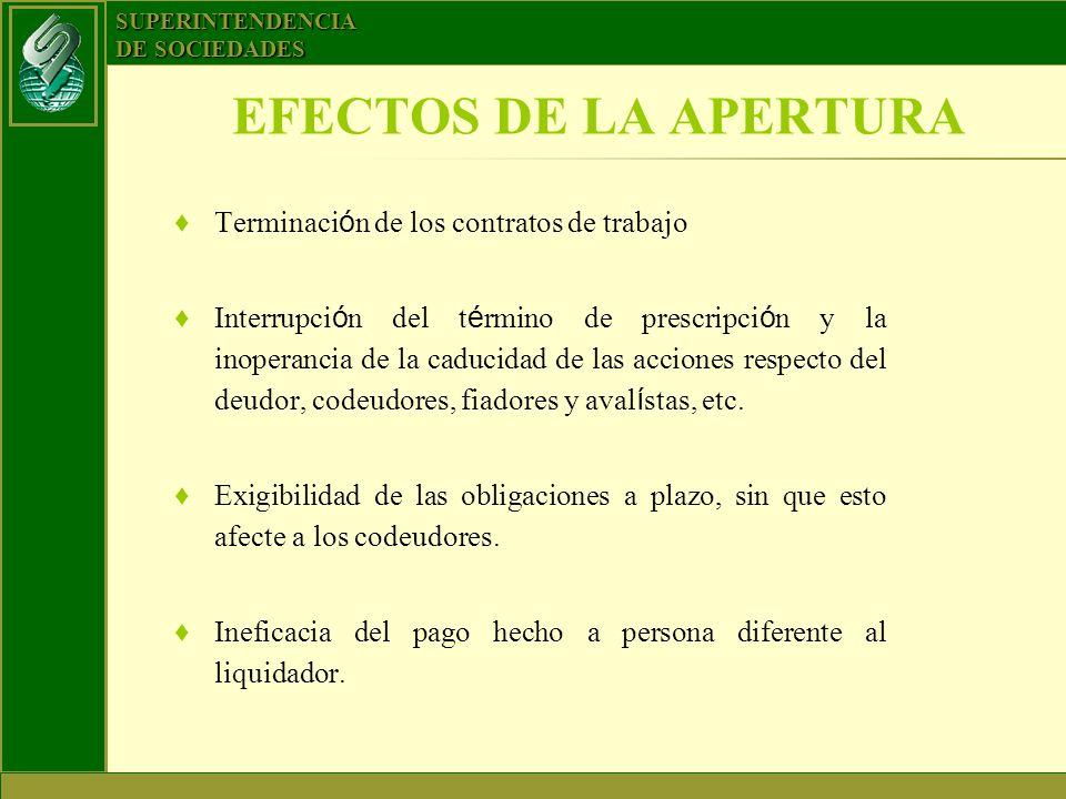 SUPERINTENDENCIA DE SOCIEDADES EFECTOS DE LA APERTURA Terminaci ó n de los contratos de trabajo Interrupci ó n del t é rmino de prescripci ó n y la in
