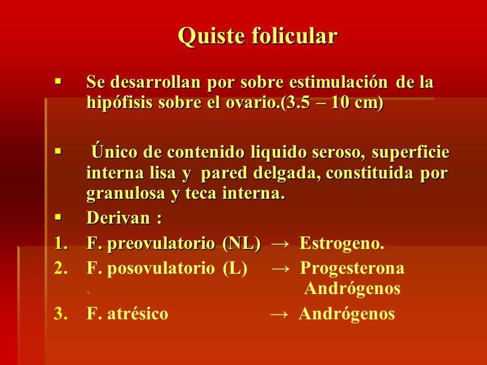 Quiste folicular Se desarrollan por sobre estimulación de la hipófisis sobre el ovario.(3.5 – 10 cm) Se desarrollan por sobre estimulación de la hipóf