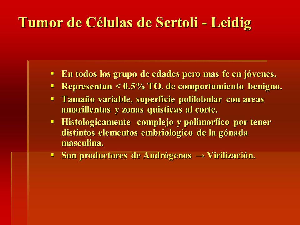 Tumor de Células de Sertoli - Leidig En todos los grupo de edades pero mas fc en jóvenes. En todos los grupo de edades pero mas fc en jóvenes. Represe