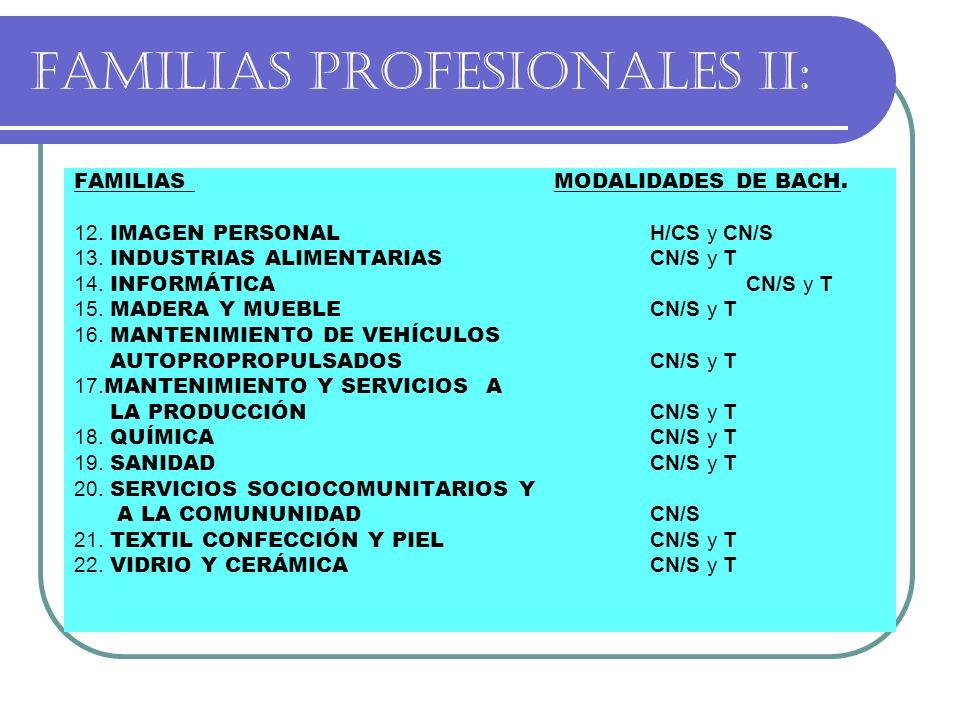 FAMILIAS PROFESIONALES II: FAMILIASMODALIDADES DE BACH. 12. IMAGEN PERSONAL H/CS y CN/S 13. INDUSTRIAS ALIMENTARIAS CN/S y T 14. INFORMÁTICA CN/S y T