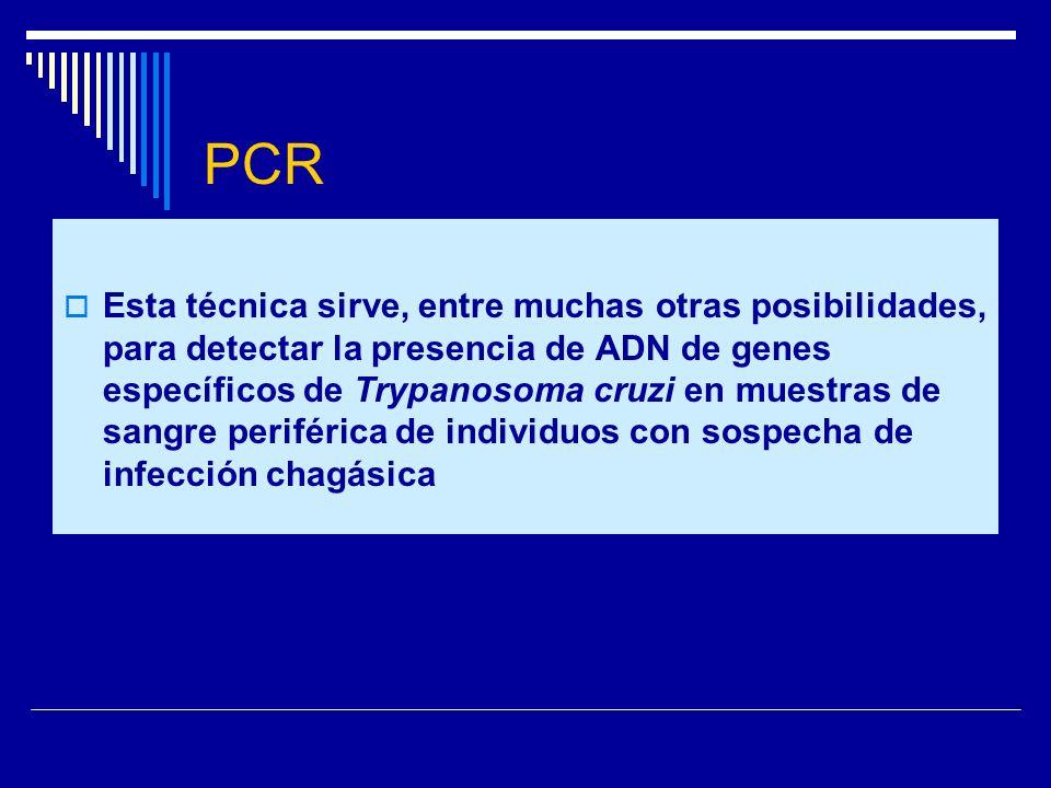 PCR Esta técnica sirve, entre muchas otras posibilidades, para detectar la presencia de ADN de genes específicos de Trypanosoma cruzi en muestras de s