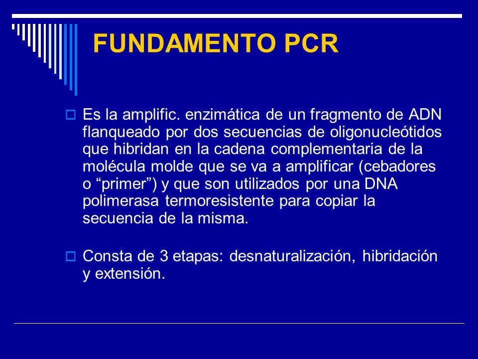 FUNDAMENTO PCR Es la amplific. enzimática de un fragmento de ADN flanqueado por dos secuencias de oligonucleótidos que hibridan en la cadena complemen