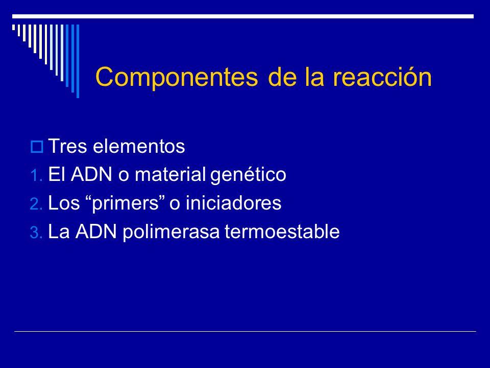 Componentes de la reacción Tres elementos 1. El ADN o material genético 2. Los primers o iniciadores 3. La ADN polimerasa termoestable