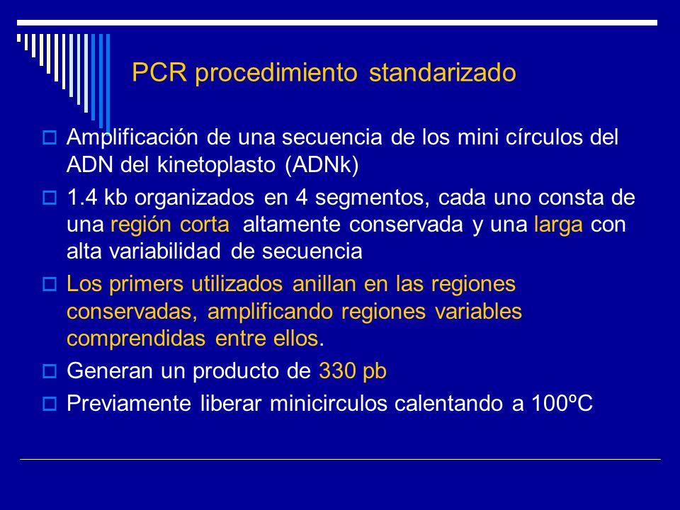 PCR procedimiento standarizado Amplificación de una secuencia de los mini círculos del ADN del kinetoplasto (ADNk) 1.4 kb organizados en 4 segmentos,