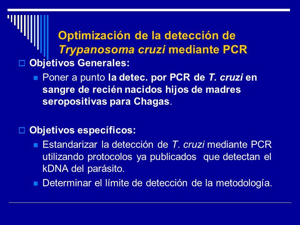 Optimización de la detección de Trypanosoma cruzi mediante PCR Objetivos Generales: Poner a punto la detec. por PCR de T. cruzi en sangre de recién na