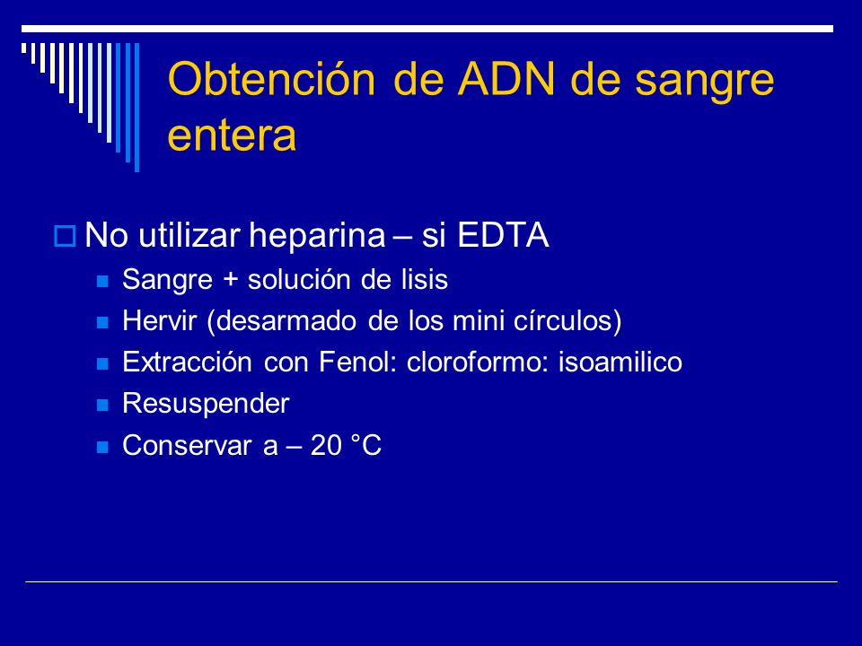 Obtención de ADN de sangre entera No utilizar heparina – si EDTA Sangre + solución de lisis Hervir (desarmado de los mini círculos) Extracción con Fen