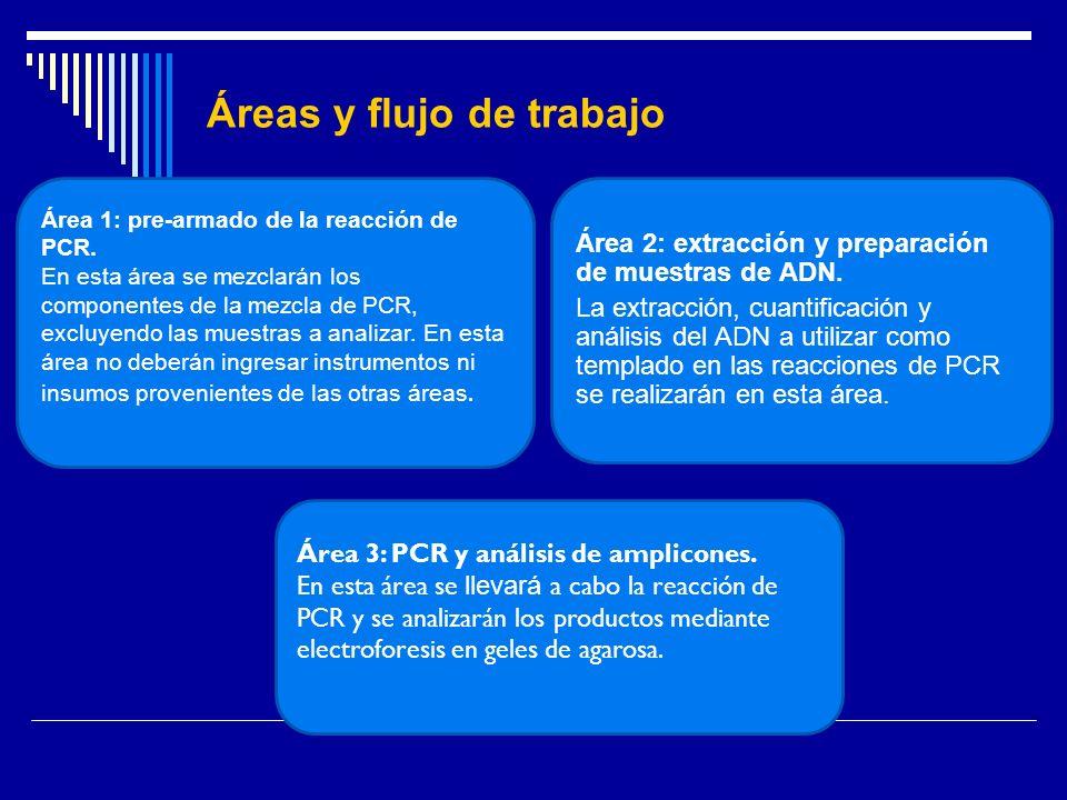 Áreas y flujo de trabajo Área 1: pre-armado de la reacción de PCR. En esta área se mezclarán los componentes de la mezcla de PCR, excluyendo las muest