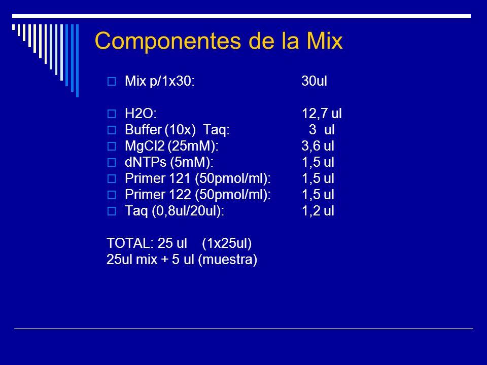 Componentes de la Mix Mix p/1x30: 30ul H2O: 12,7 ul Buffer (10x) Taq: 3 ul MgCl2 (25mM): 3,6 ul dNTPs (5mM): 1,5 ul Primer 121 (50pmol/ml): 1,5 ul Pri