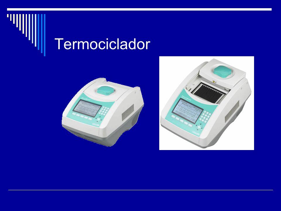 Termociclador