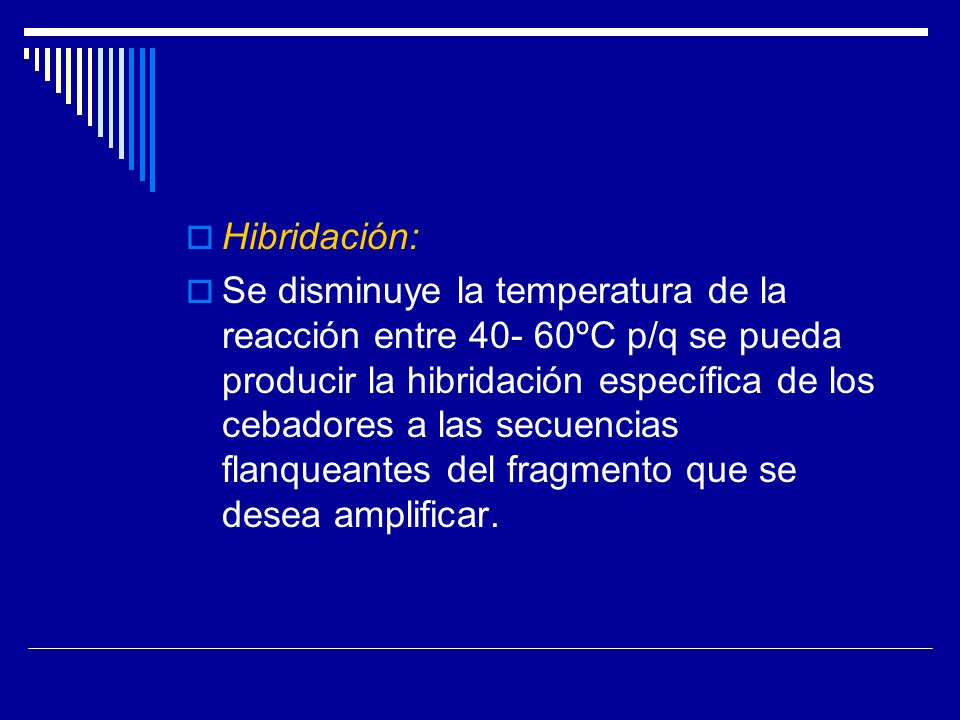 Hibridación: Se disminuye la temperatura de la reacción entre 40- 60ºC p/q se pueda producir la hibridación específica de los cebadores a las secuenci