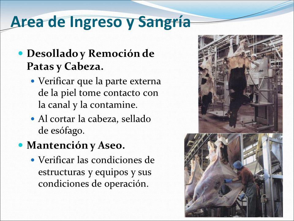 Area de Ingreso y Sangría Desollado y Remoción de Patas y Cabeza. Verificar que la parte externa de la piel tome contacto con la canal y la contamine.