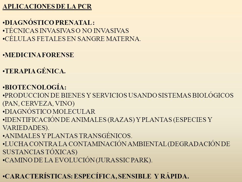 APLICACIONES DE LA PCR DIAGNÓSTICO PRENATAL : TÉCNICAS INVASIVAS O NO INVASIVAS CÉLULAS FETALES EN SANGRE MATERNA. MEDICINA FORENSE TERAPIA GÉNICA. BI