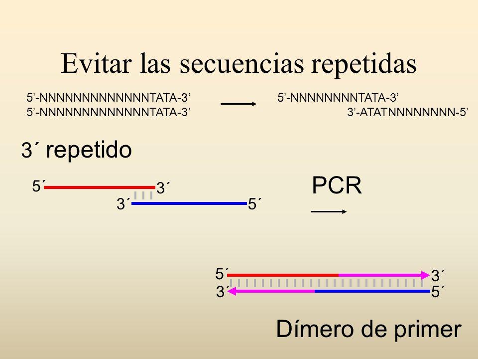 Evitar las secuencias repetidas 5´ 3´ 5´ 3´ Dímero de primer PCR 3´ repetido 5-NNNNNNNNNNNNNTATA-3 5-NNNNNNNNTATA-3 3-ATATNNNNNNNN-5