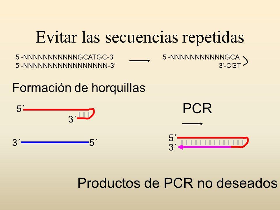 Evitar las secuencias repetidas 5´ 3´ Productos de PCR no deseados PCR Formación de horquillas 5-NNNNNNNNNNNGCATGC-3 5-NNNNNNNNNNNNNNNNN-3 5-NNNNNNNNN