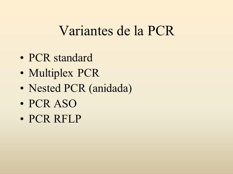 Variantes de la PCR PCR standard Multiplex PCR Nested PCR (anidada) PCR ASO PCR RFLP