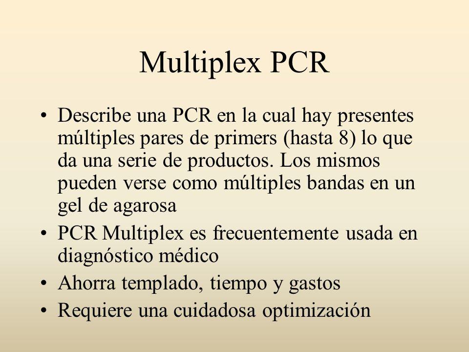 Multiplex PCR Describe una PCR en la cual hay presentes múltiples pares de primers (hasta 8) lo que da una serie de productos. Los mismos pueden verse