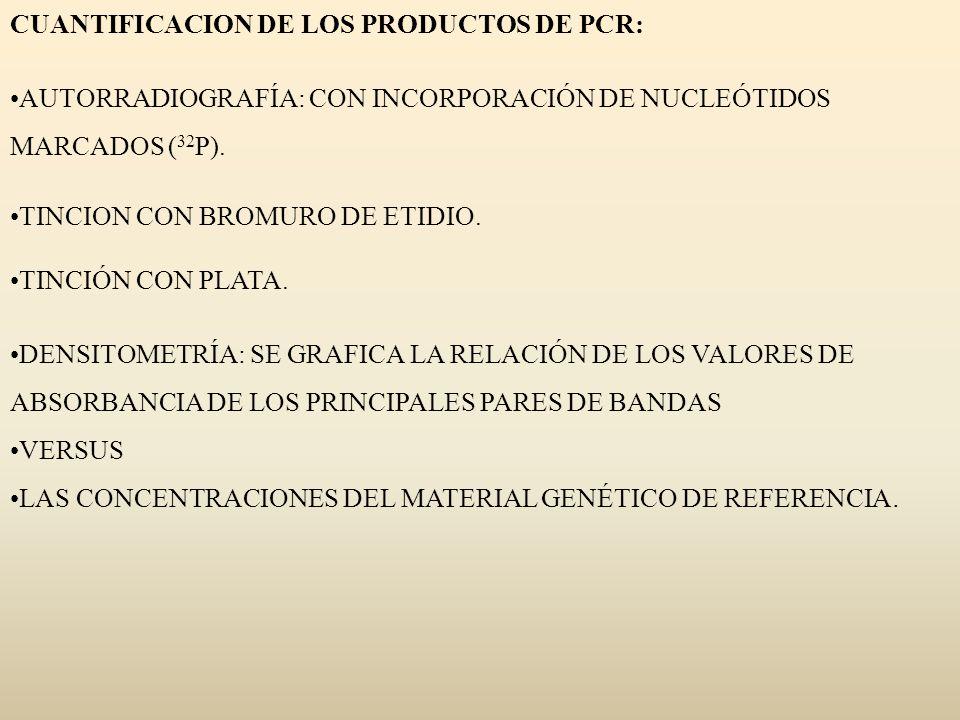 CUANTIFICACION DE LOS PRODUCTOS DE PCR: AUTORRADIOGRAFÍA: CON INCORPORACIÓN DE NUCLEÓTIDOS MARCADOS ( 32 P). TINCION CON BROMURO DE ETIDIO. TINCIÓN CO