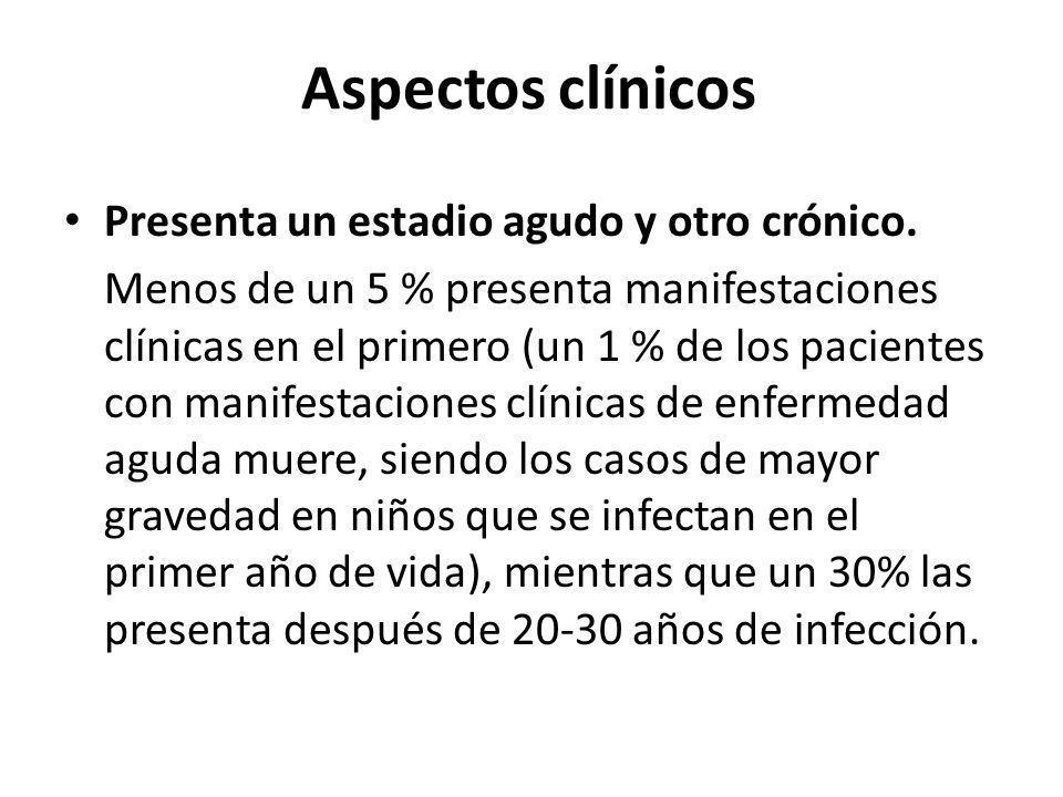 Aspectos clínicos Presenta un estadio agudo y otro crónico. Menos de un 5 % presenta manifestaciones clínicas en el primero (un 1 % de los pacientes c