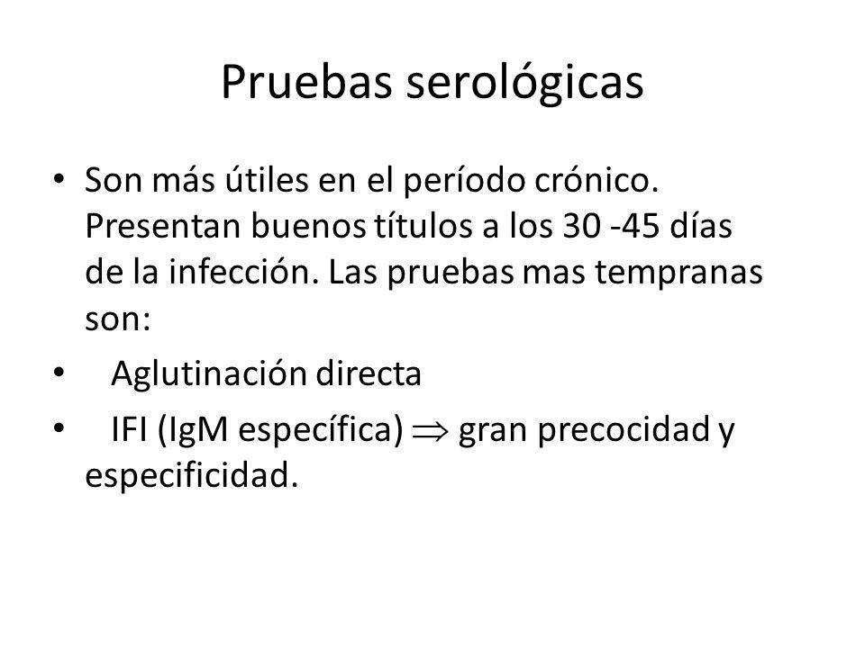 Pruebas serológicas Son más útiles en el período crónico. Presentan buenos títulos a los 30 -45 días de la infección. Las pruebas mas tempranas son: A