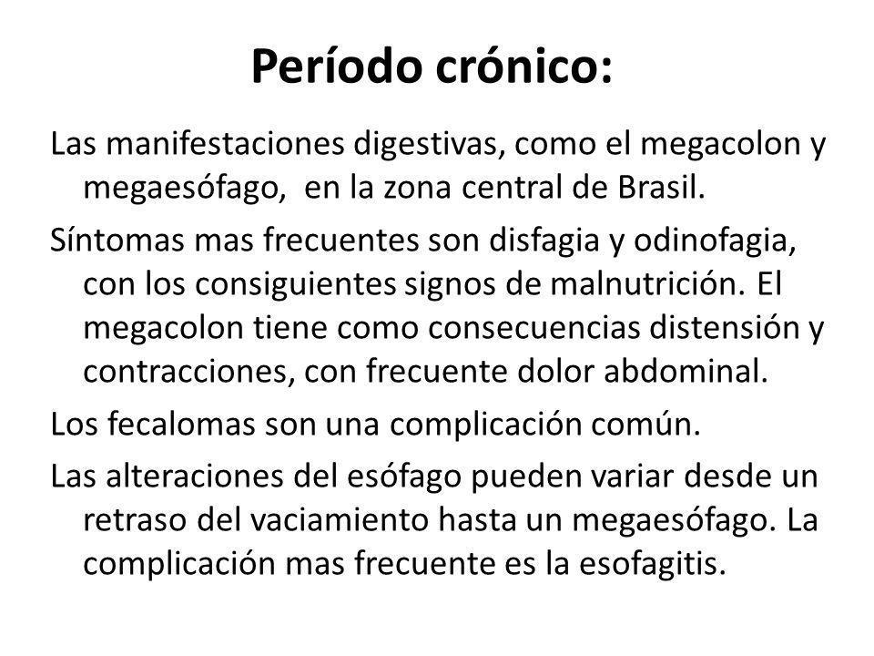 Período crónico: Las manifestaciones digestivas, como el megacolon y megaesófago, en la zona central de Brasil. Síntomas mas frecuentes son disfagia y