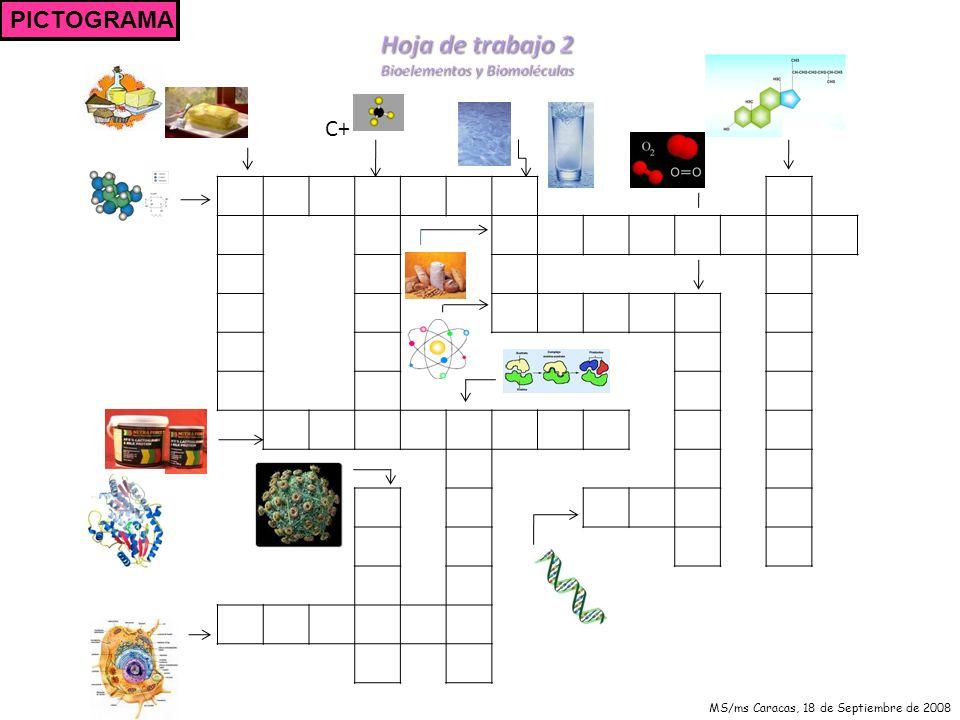 A continuación se presenta una serie de imágenes que deberás recortar y pegar en la siguiente hoja donde encontrarás una célula totalmente vacía.