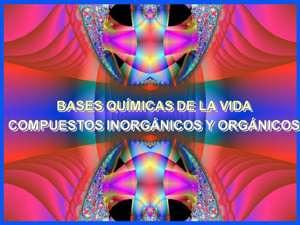 BASES QUÍMICAS DE LA VIDA COMPUESTOS INORGÁNICOS Y ORGÁNICOS BASES QUÍMICAS DE LA VIDA COMPUESTOS INORGÁNICOS Y ORGÁNICOS