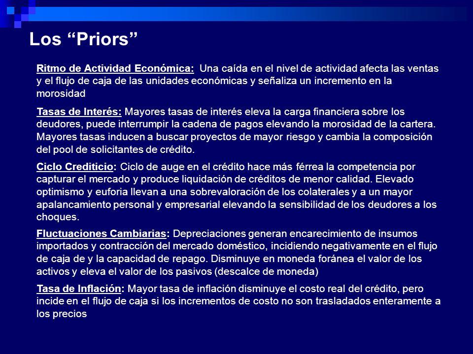Los Priors Ritmo de Actividad Económica: Una caída en el nivel de actividad afecta las ventas y el flujo de caja de las unidades económicas y señaliza