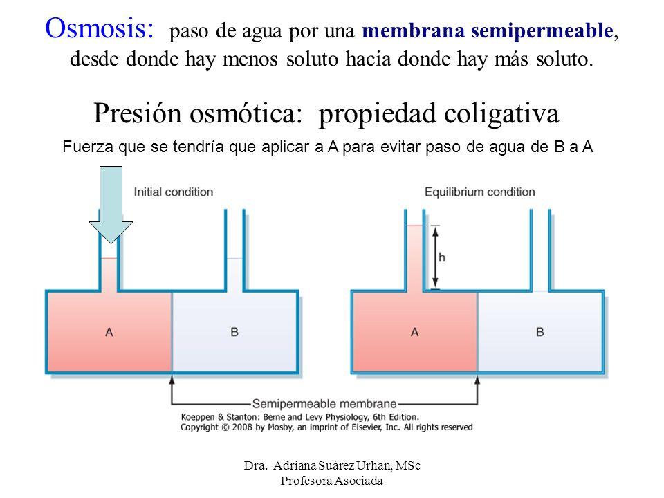Presión osmótica: propiedad coligativa Osmosis: paso de agua por una membrana semipermeable, desde donde hay menos soluto hacia donde hay más soluto.