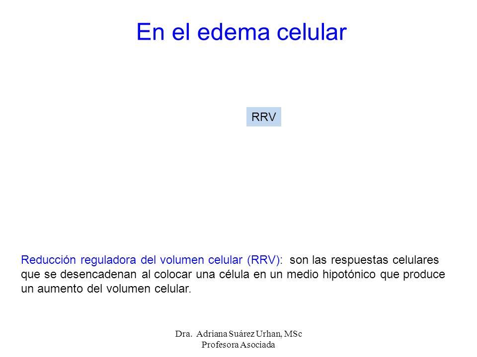 Reducción reguladora del volumen celular (RRV): son las respuestas celulares que se desencadenan al colocar una célula en un medio hipotónico que prod