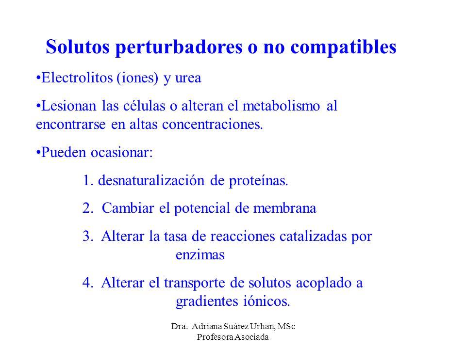 Solutos perturbadores o no compatibles Electrolitos (iones) y urea Lesionan las células o alteran el metabolismo al encontrarse en altas concentracion