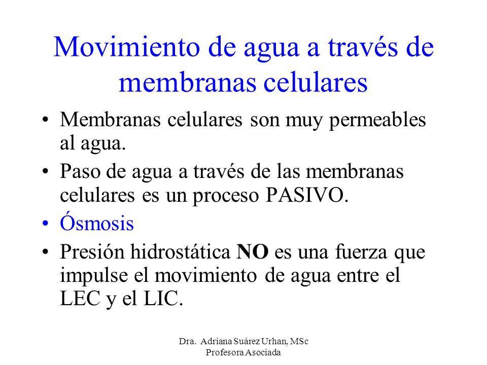 Movimiento de agua a través de membranas celulares Membranas celulares son muy permeables al agua. Paso de agua a través de las membranas celulares es