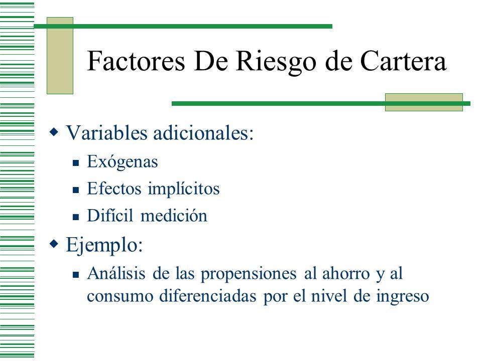 Factores De Riesgo de Cartera Variables adicionales: Exógenas Efectos implícitos Difícil medición Ejemplo: Análisis de las propensiones al ahorro y al