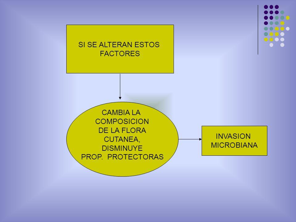 SI SE ALTERAN ESTOS FACTORES CAMBIA LA COMPOSICION DE LA FLORA CUTANEA, DISMINUYE PROP. PROTECTORAS INVASION MICROBIANA