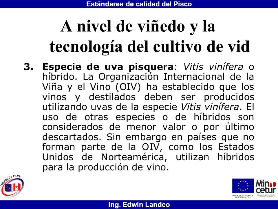 Estándares de calidad del Pisco Ing. Edwin Landeo A nivel de viñedo y la tecnología del cultivo de vid 3.Especie de uva pisquera: Vitis vinífera o híb