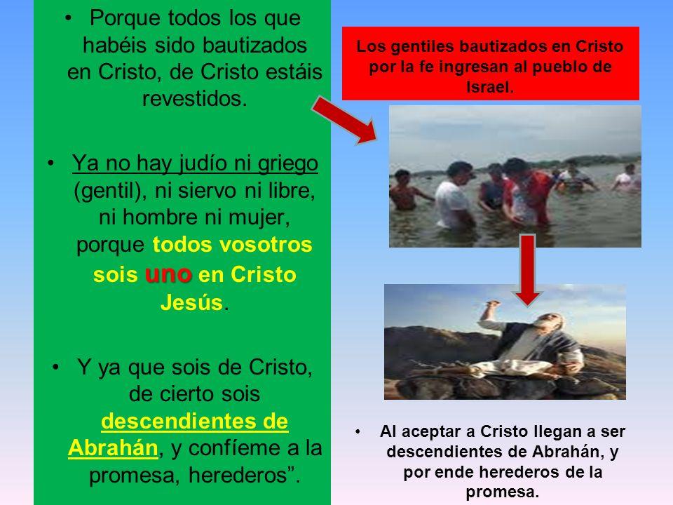 Porque todos los que habéis sido bautizados en Cristo, de Cristo estáis revestidos. unoYa no hay judío ni griego (gentil), ni siervo ni libre, ni homb