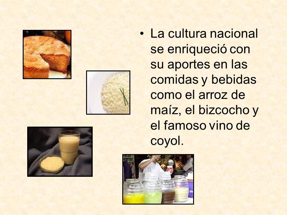 La cultura nacional se enriqueció con su aportes en las comidas y bebidas como el arroz de maíz, el bizcocho y el famoso vino de coyol.