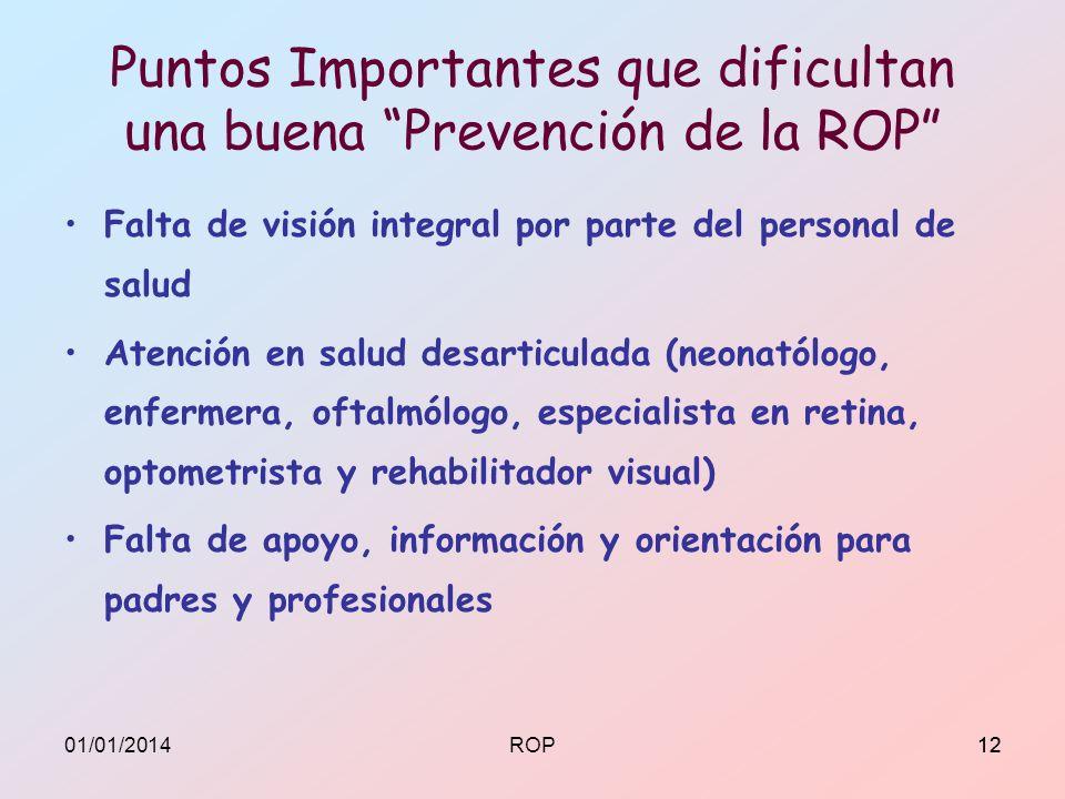 Puntos Importantes que dificultan una buena Prevención de la ROP Falta de visión integral por parte del personal de salud Atención en salud desarticul